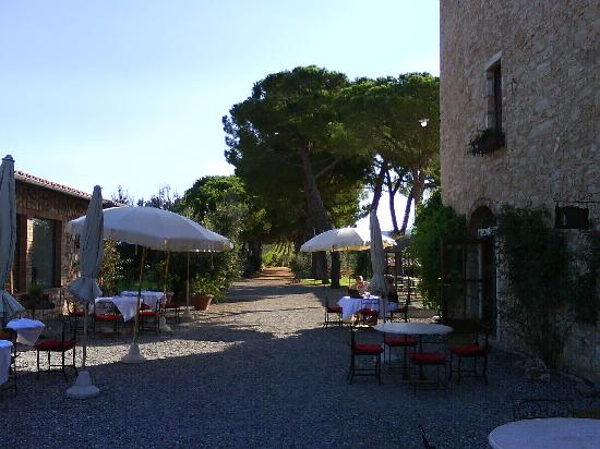 Villa Il Tesoro: breakfast in the open air