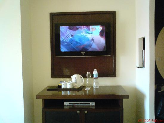 The Metropole Hotel: LCD TV n DVD player