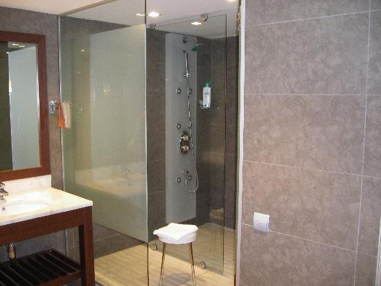 The Amazing Shower Wet Room - Picture of Magnolia Hotel, Salou ...