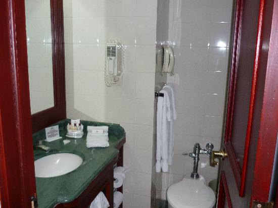 Very small bathroom picture of crowne plaza guatemala for Really small bathroom