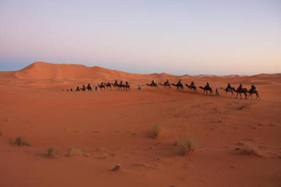 Africa: desert explor