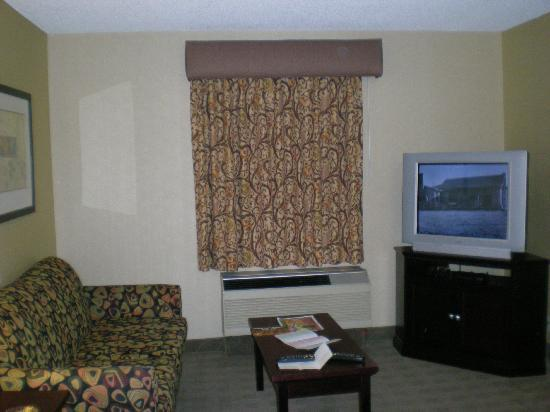Hampton Inn & Suites by Hilton Calgary-Airport: Living Room