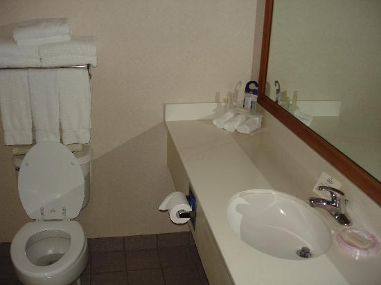 Holiday Inn Express Hotel & Suites Jacksonville South: Bathroom