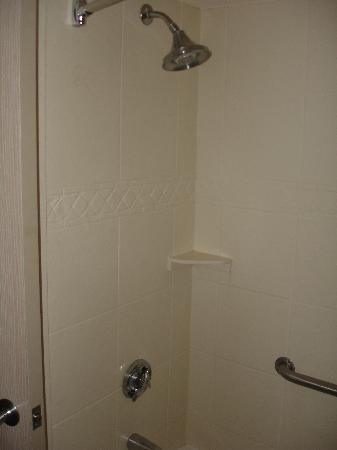 Holiday Inn Express Hotel &amp; Suites Jacksonville South: Shower