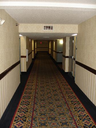 Holiday Inn Express Hotel & Suites Jacksonville South: Hallway