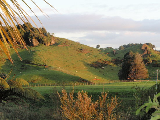 Waitomo Caves, New Zealand: view from the cottage porch
