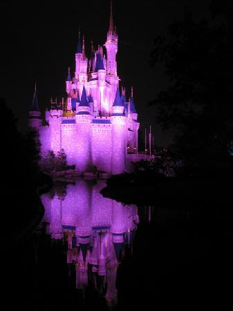 walt disney world castle logo. Read Walt Disney World Reviews