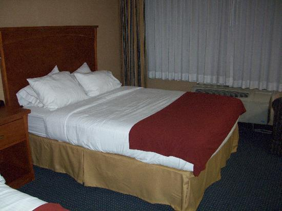 Holiday Inn Express: The beds were comfy!