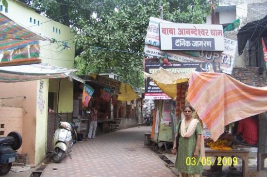 alojamientos bed and breakfasts en Kanpur