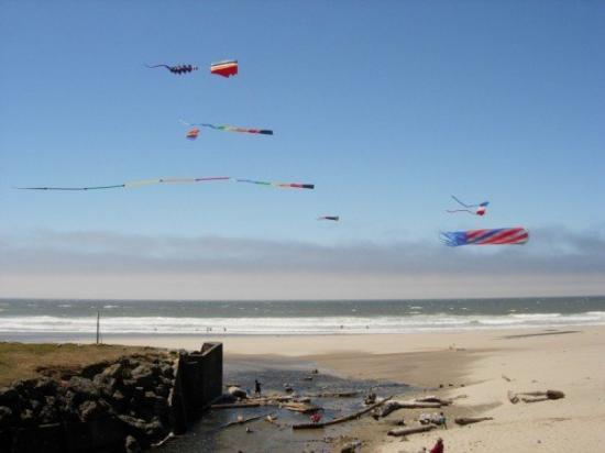 Kite Flying In Lincoln City Oregon Picture Of Lincoln