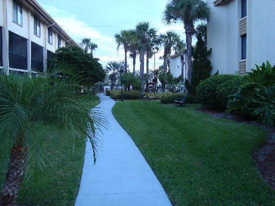 Orlando International Resort Club: Landscaping
