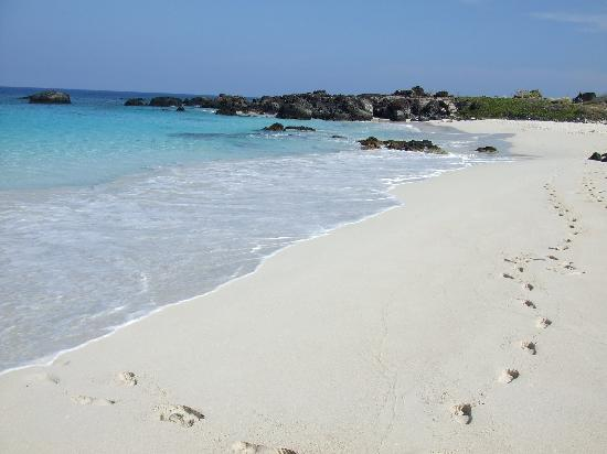 Manini Olawi Beach Incredible Blue Water And Soft White Sand Picture Of Manini Owali Beach