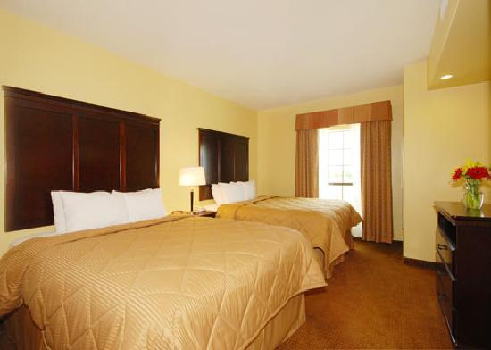 Comfort Inn Near SeaWorld: Double Queen