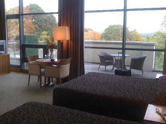 Newpark Hotel: My room, great views and light