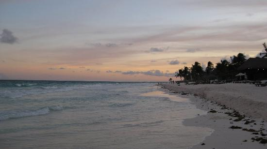 Ocho Tulum: Beach in front of Ocho at sunset