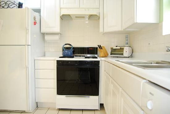 Lincoln Park Oasis: Kitchen - Unit 2