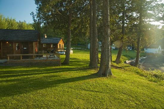Lonesome Cove Resort: Two of the five cabins in late afternoon