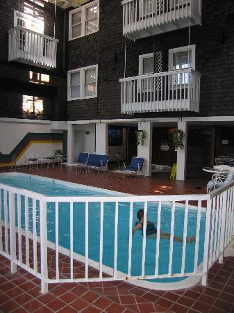 The Crafts Inn: Pool and atrium