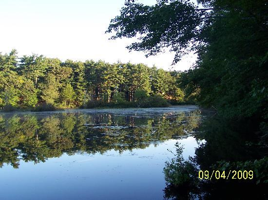 Pinewood Lodge Campground: Pinewood Lake