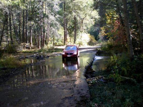 Paynes Creek, CA: Willie on the cement slab, Middle fork, Antelope Creek. Every car I have owned has been photogra