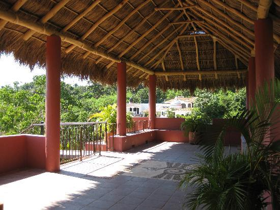 Casa de Tortugas: the rooftop palapa