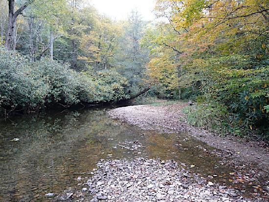 Franklin, NC: Stream running through the middle of the campground (Fall 08')