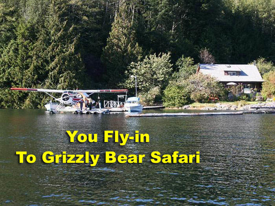 Grizzly Bear Lodge & Safari