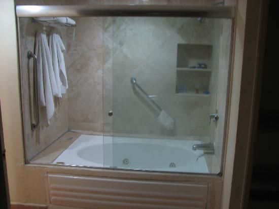 jacuzzi tub and shower enclosure picture of fiesta americana villas