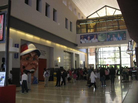 The Health Museum - Picture of The Health Museum, Houston ...