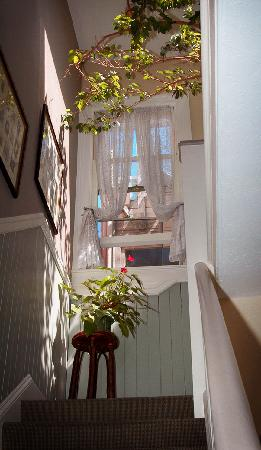 The Willows Bed and Breakfast Inn: Photos adorn our stairway