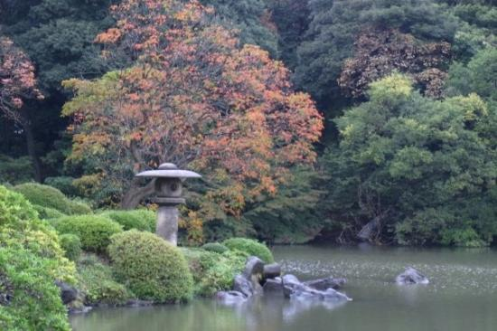 Bunkyo, Japan: Lamp, semi-red leave tree, Rikugien garden