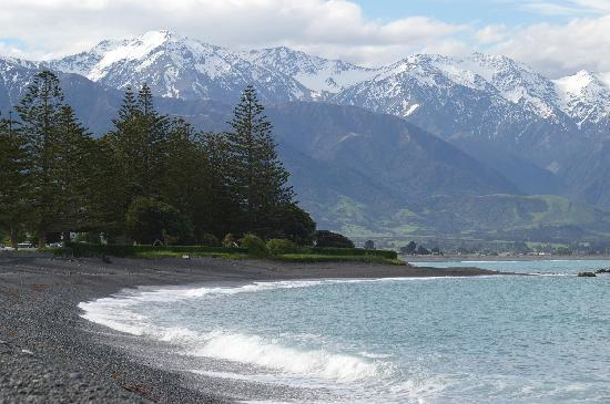 Waves on the Esplanade Kaikoura: our view!