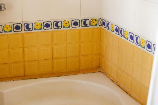 bathroom tiles 1 picture of ranthambhore safari lodge sawai