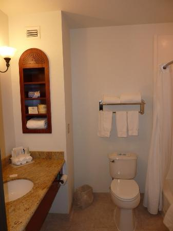 Holiday Inn Express Hotel &amp; Suites Jackson: The bathroom