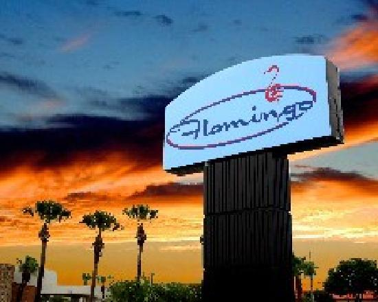 Flamingo Resort: Flamingo Sign