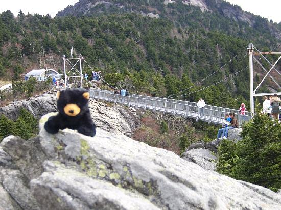 Grandfather Mountain: bridge