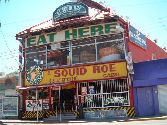 El squid roe cabo san lucas restaurant reviews phone for Food bar john roe