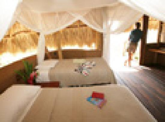 Playa Viva: Studio Bedroom - two single beds can be combined to make a king - unobstructed beach view