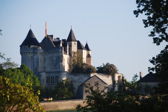 Photo of Chateau de la Motte Usseau