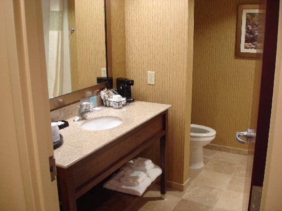 Hampton Inn and Suites Woodstock, VA: Bathroom