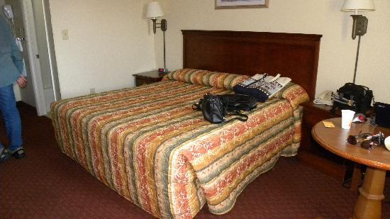 Super 8 Motel Fredricksburg South: Comfy Bed