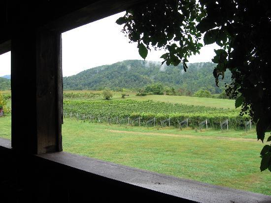 , : view from the winery balcony