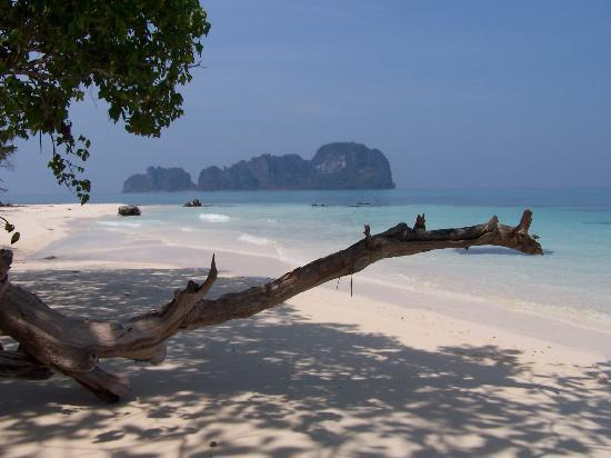 Walking around Bamboo Island. - Picture of Bamboo Island, Ko Phi Phi Don - Tr...
