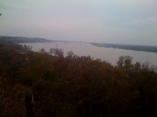 Sunset View Guest Cottages: View of the Mississippi River from the back yard