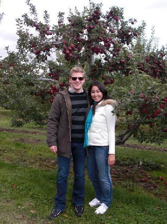 Garden Gables Inn: Apple Picking at Hilltop