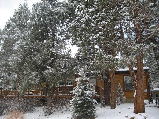Big Bear Cool Cabins: A Snowy Day