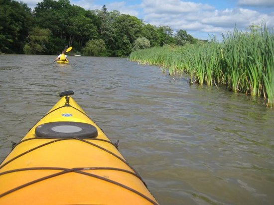 Mississauga, Kanada: Kayaking on a summer day along the Credit River.