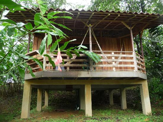 Photo of Selva Bananito Lodge Cahuita