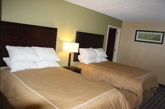 Comfort Inn & Suites East Hartford: Modern Double