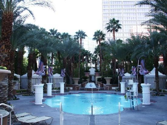 Are mistaken. adult only resorts las vegas